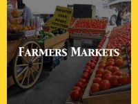Farmers Markets In Sussex Category Default Image.001