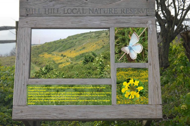 Mill Hill Local Nature Reserve