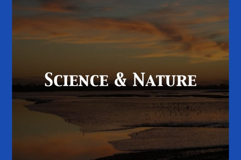 Science & Nature In Sussex Category Default Image.001