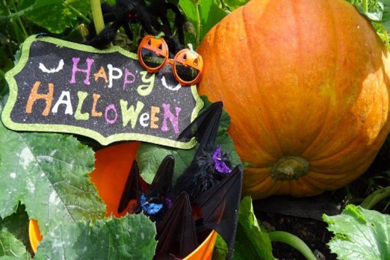 Halloween at Michelham Priory