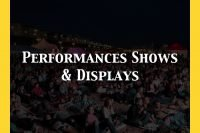 Performances Shows & Displays In Sussex Category Default Image.001
