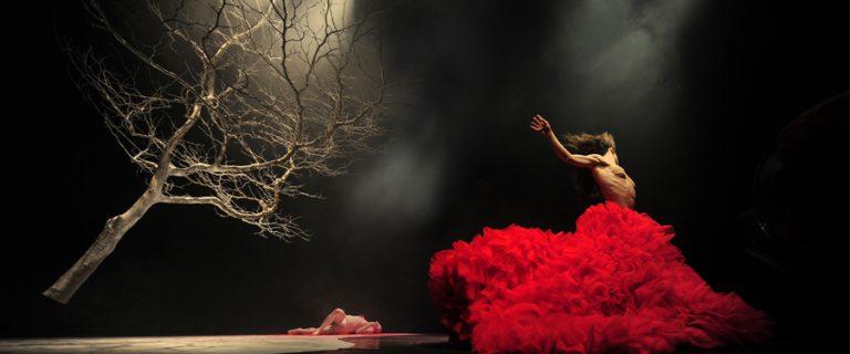 Vortice Dance - Dracula at White Rock Theatre