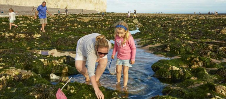 Beach Scavenger Hunts at Birling Gap