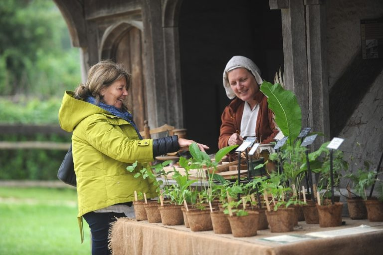 Herbal Heritage Weekend at Weald and Downland Museum
