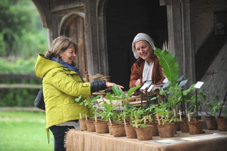 Herbal Heritage at Weald & Downland Museum