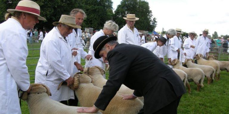 Rare & Traditional Breeds Show at Weald & Downland Museum