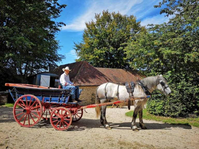 The Role of Horses at Weald & Downland Museum