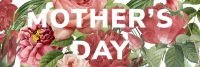 Mother's Day Cream Tea at Mannings Heath