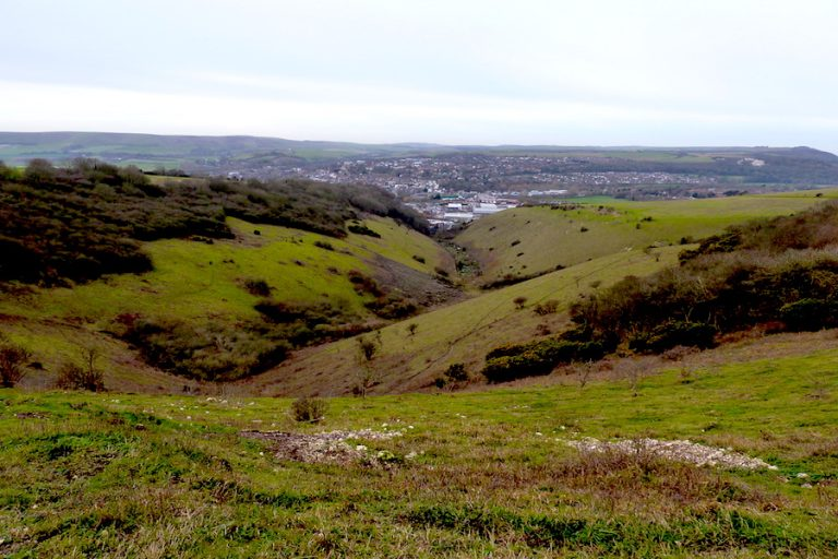 Malling Down Nature Reserve