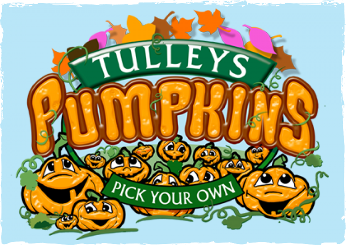 Pick Your Own Pumpkins at Tulleys Farm
