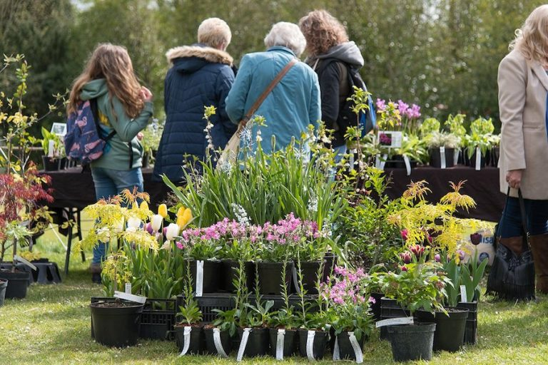 April Plant Fair at Arundel Castle
