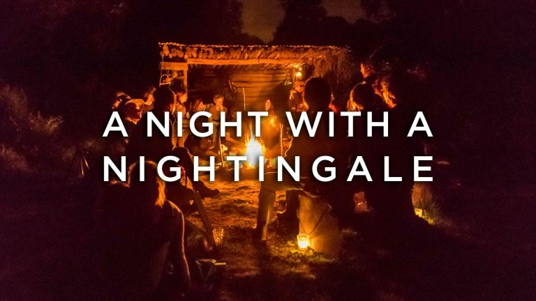 A Night With A Nightingale