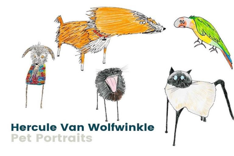 Hercule Van Wolfwinkle Exhibition at Worthing Museum & Art Gallery