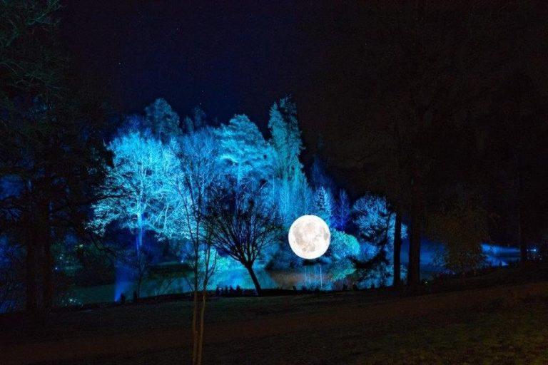 Leonardslee Illuminated 2021